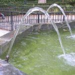 Vattenparabler